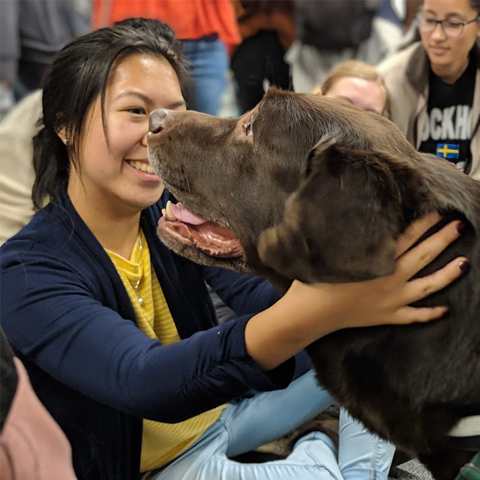 ExploreLLC student interacting with a dog